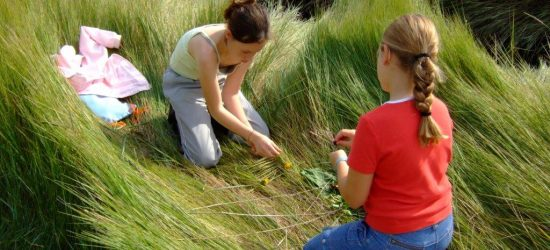 Les petits artistes en herbe006 (2)